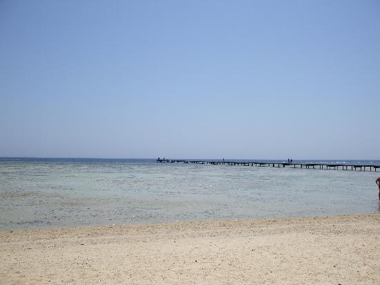 Three Corners Fayrouz Plaza Beach Resort : spiaggia Three Corners