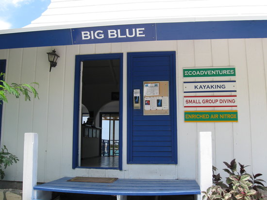 Big Blue Unlimited