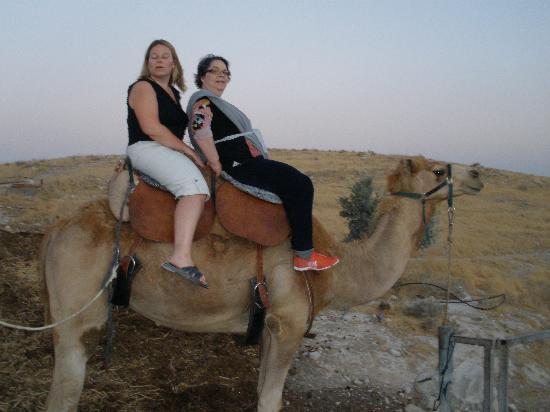 Genesis Land: camel ride