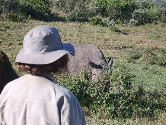 Mara Concord Game Lodge : Walking with rhinos