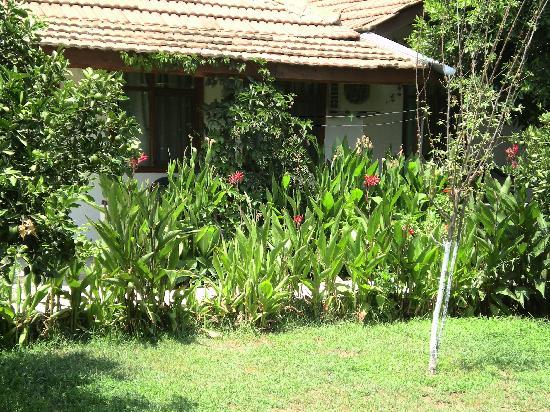 Harun Pansiyon: Garden