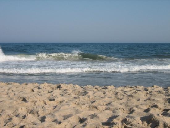 The Ocean Resort Inn: beach
