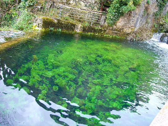 Orbaneja del Castillo: estanque