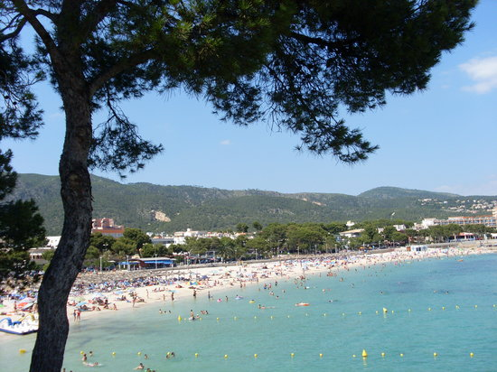 Palma Nova, Spanien: This beach today?