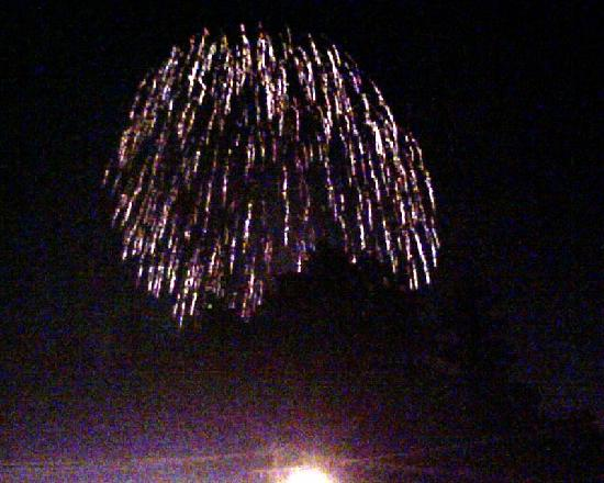 Pinebrook Motel: Firework from PineBrook