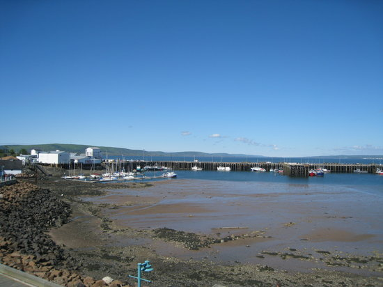 Digby, Canada: Low tide from Suite D