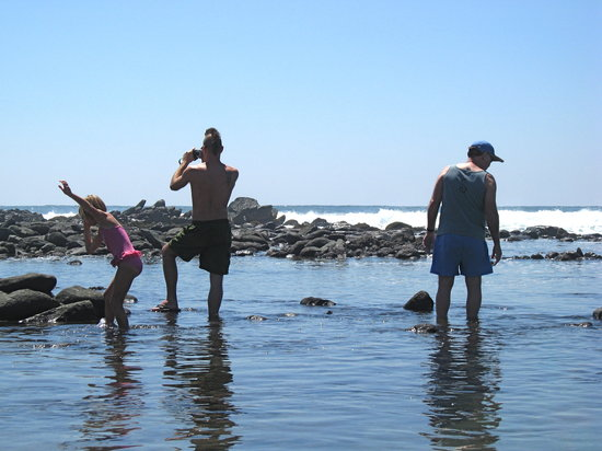 Searching the tide pools at Troncones Point