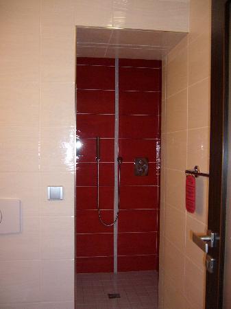 Hotel Plzen: Nice large modern shower