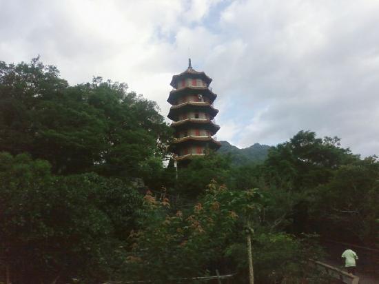 cingjing naluwan minsu spring 08 - Foto di Taiwan, Asia - TripAdvisor