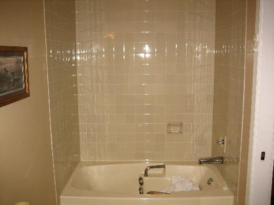 Mountain View Villas at Cranberry: Master bath has no shower head so you have to shower in the 3 pc. bath off the livingroom.