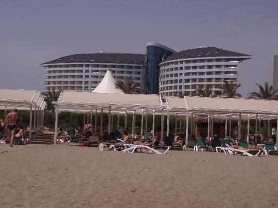 Royal Wings Hotel: Hotel from the beach