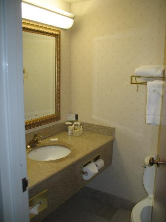 Four Points by Sheraton San Jose Airport: Bathroom - Sink Side