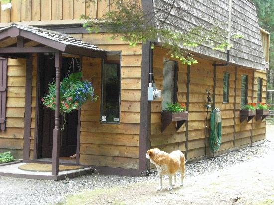 Cedar Song B&B and Cottage: house built by the owner