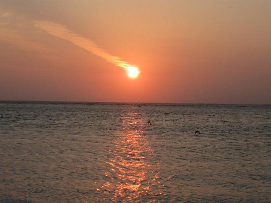 Tradewinds Beach Resort: sunset at bean point