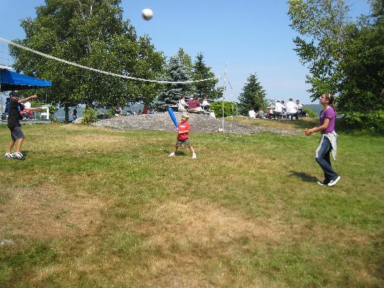 Cabbage Island: Sports area