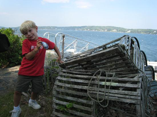Cabbage Island: Old Lobster Traps