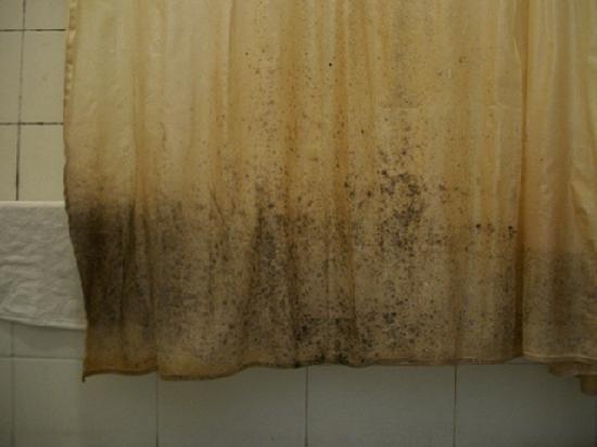 Farol Hotel: Shower Curtain