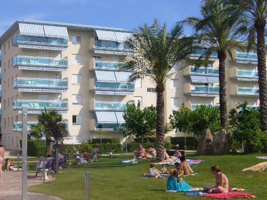 Apartamentos Los Juncos: vue de la piscine