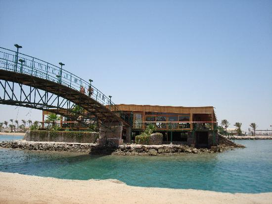 Desert Rose Resort: spiaggia hotel