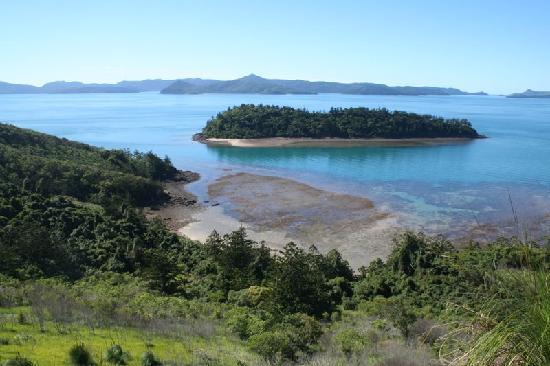 Νησί South Molle, Αυστραλία: View from South Molle Island