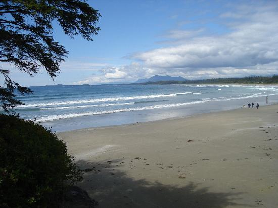 Long Beach Tofino Vancouver Island British Columbia Canada
