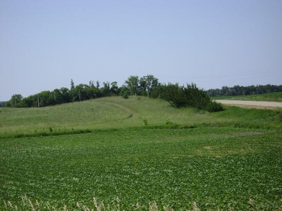 Birdwing Spa: trail cut through the grass