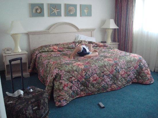 Biscayne Suites: Main Bed