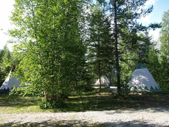 Goldenwood Lodge: Das Tipi Camp