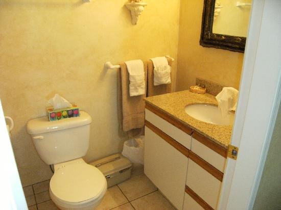 Selah Retreat B&B: Bathroom (with full bath/shower inside and to left)