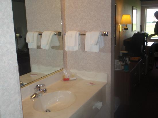 Ramada by Wyndham Spirit Lake/Okoboji: sink area