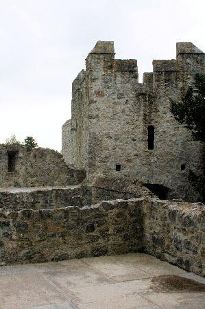 Adare Castle: Interior