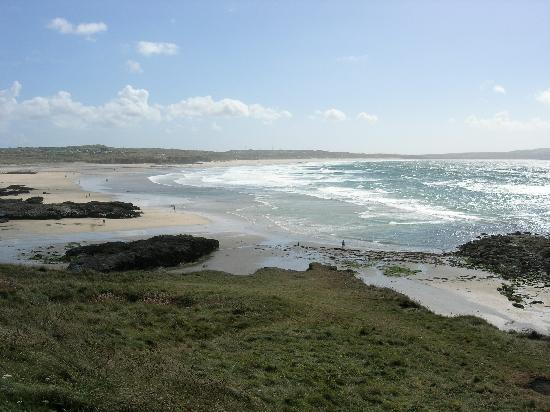 The Mustard Tree : Godrevy Point