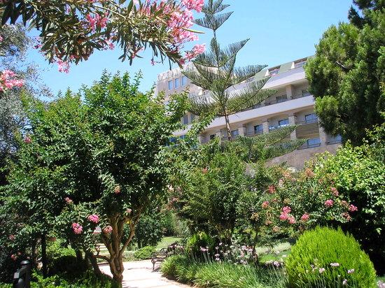 Oleander Hotel: garden
