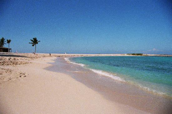 Cove Beach Atlantis Paradise Island