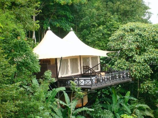 show user reviews four seasons tented camp golden triangle chiang saen province
