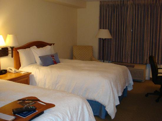 Hampton Inn & Suites Austin - Airport: Room picture