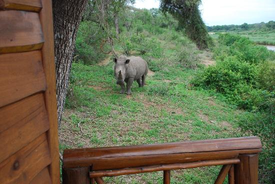 Lion Sands - Tinga Lodge: Lock the door!