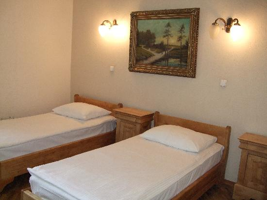 schlaf-/wohnzimmer - picture of rachmaninov art-hotel, st, Wohnzimmer