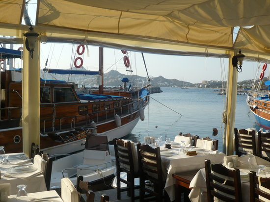 4reasons hotel+bistro: Yalikavak village boat trip and fish restaurant with delicious mezes