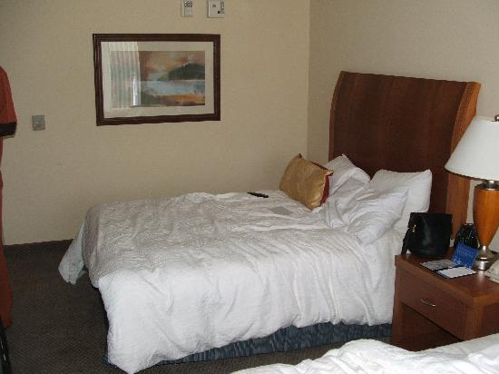 Hilton Garden Inn Albany: One of the Queen Beds...Very Comfortable
