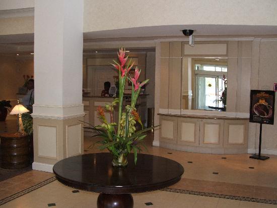 Hilton Garden Inn Albany: Lobby Area