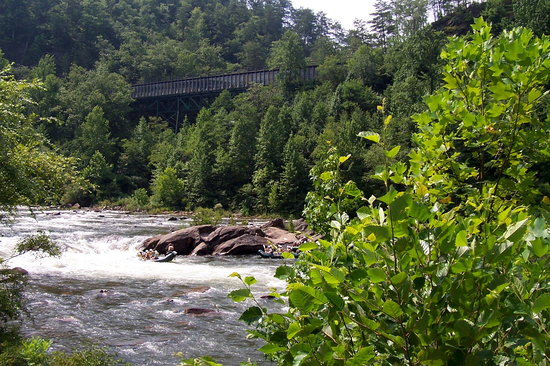 Cherokee National Forest: Ocoee river view