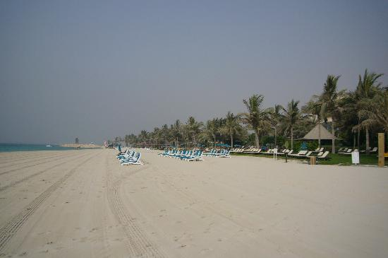 JA Palm Tree Court: beach