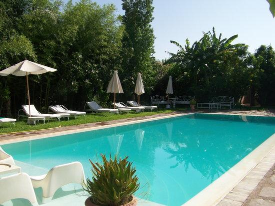 Le Bled: La piscine
