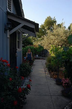 Andrea's Hidden Cottage : pathway