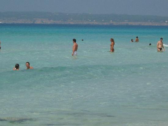 Hotel Riu La Mola : spiagge da sogno