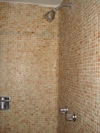 Foto de hotel de cuautla cuautla otra foto del ba o for Regaderas manuales para bano