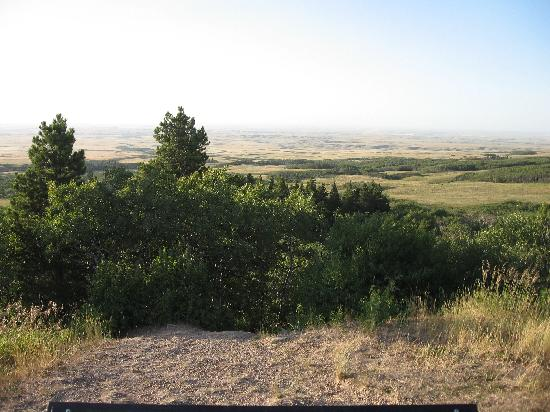 Cypress Hills Interprovincial Park: View from Lookout Point