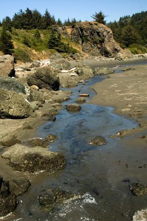 Whaleshead Beach Resort: The creek leading to the beach