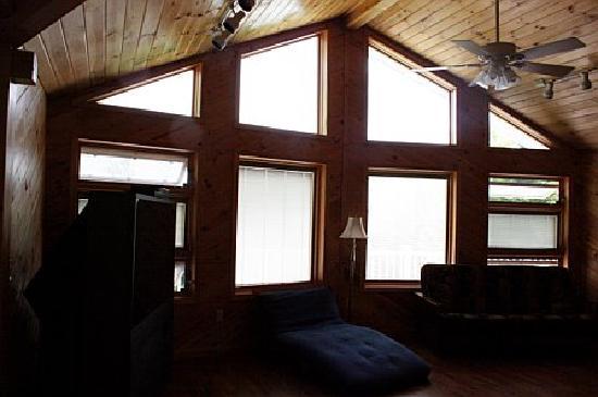 Snowfield Cabins : Great room